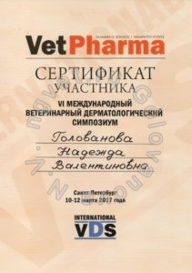 Сертификат ветеринарного врача Головановой Н.В. как участника Шестого Международного ветеринарного дерматологического симпозиума 2017