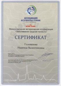 """Сертификат ветеринарного врача Головановой Н.В. как участника Международной ветеринарной конференции """"Заболевания грудной полости"""""""