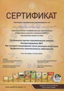 Сертификат ветеринарного врача Головановой Н.В. как участника тематической конференции от кампании БАЙЕР 29.03.2016